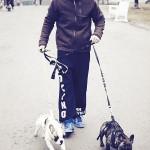 Koivula ulkoiluttaa koiriaan Rolloa ja Ruttua.