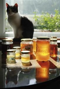 Eljas Kokkosen hunajakokoelmassa on parikymmentä makua eri puolilta maailmaa.