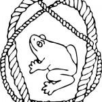 Sisupartion tunnuseläin on sammakko.