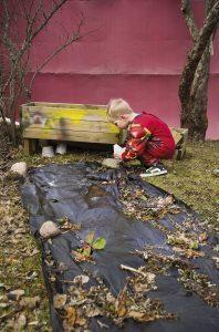 Aapeli hoitaa mansikkamaataan, jonka vaari on hänelle tehnyt.