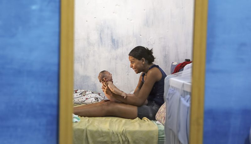 Brasilia: Hyttysen uhri