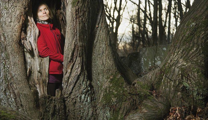 Metsän tyttö Anni Kytömäki