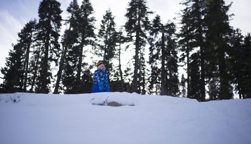 Lunta etsimässä