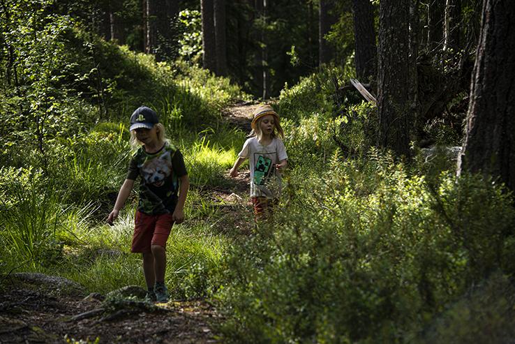 Lapsi juoksee metsässä, vihreä