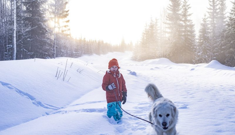 Kenen syytä on lumettomuus- ajatuksia tavoista kertoa ilmastonmuutoksesta lapsille