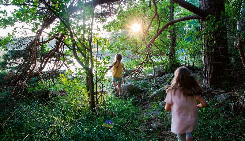 Mistä syntyy lapsuuden kesien taika?