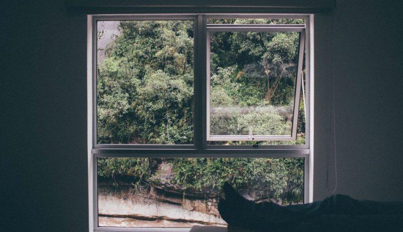 Keuhkot kasaan ja ikkuna auki – Hajatelmia raskausviikoilta 20–28