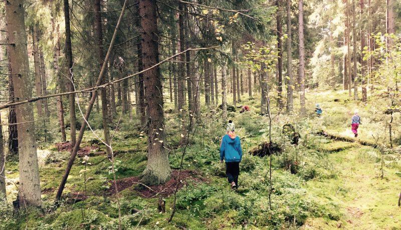 Metsän lapset