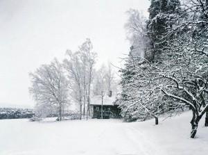 Ainolan sauna. Kuva Taneli Eskola